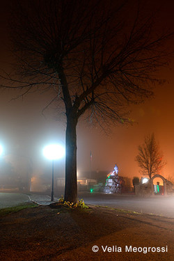 What a wonderful world! (series) - Foggy