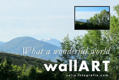 What_a_wonderful_world_9.jpg