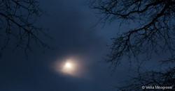 Silent moon - V