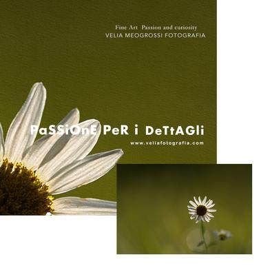 Print_Spring_is_here.jpg