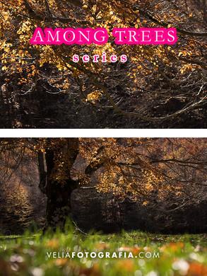 Among_trees_XVII_cop.jpg