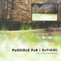 print_Among_trees_04.jpg