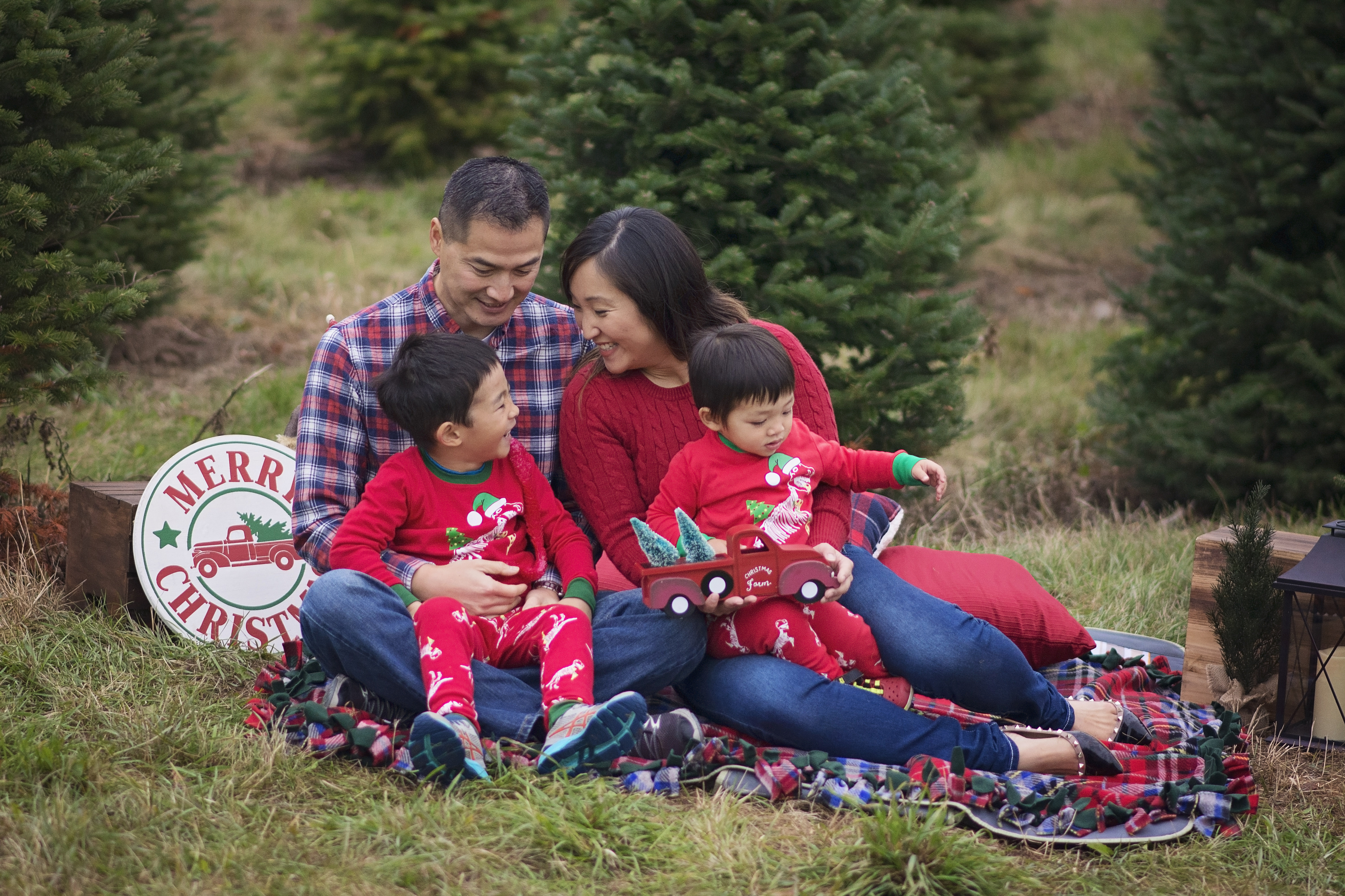 Christmas family session tree farm