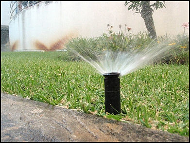 Irrigation on property maintained by Lupine Lawn Care.
