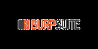 Sızma Testi Penetrasyon Burp Suite
