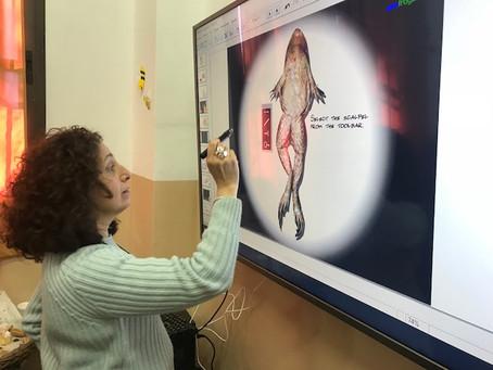 Capacitación en el uso de Pizarra Electrónica Digital en el Colegio Arnold Gesell de la Localidad de