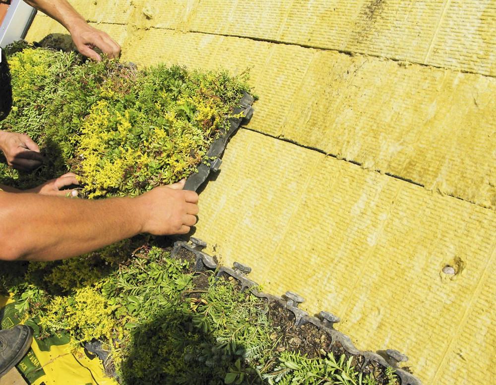 Speciální nasákavé desky z minerální vlny pomáhají akumulovat vodu a částečně fungují i jako substrát.