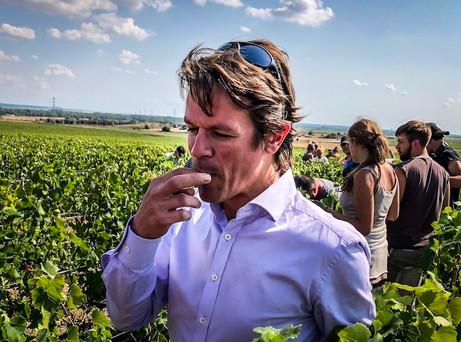 Johann Merle, Champagne Louis Roederer