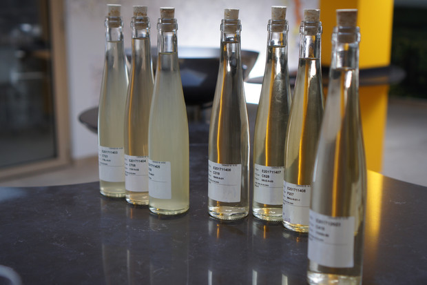 Vins Clairs 2017 Tasting at Champagne Veuve Clicquot