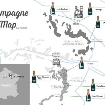 Seven Best Blanc de Blancs Champagne