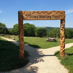Miles Marling Field