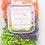 Thumbnail: CRINKLYSENS™ -HALLOWEEN EDITION (CANDY APPLE)