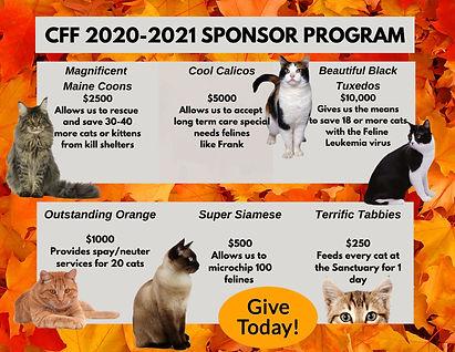 20-21-yrend-sponsor-.jpg
