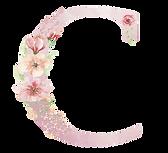 chucolat logo.png