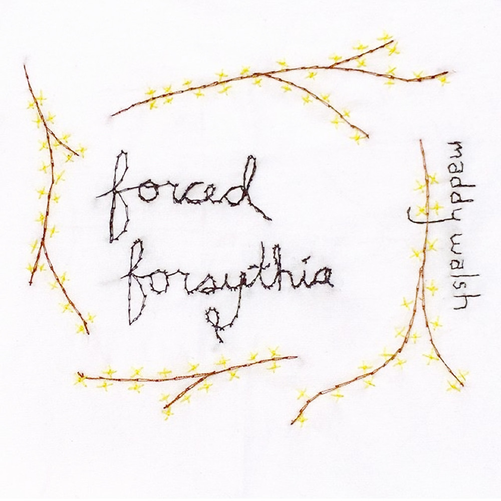 Newly Released: Forced Forsythia CD by Maddy Walsh