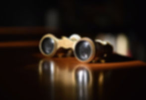 Vintage Theater Glasses