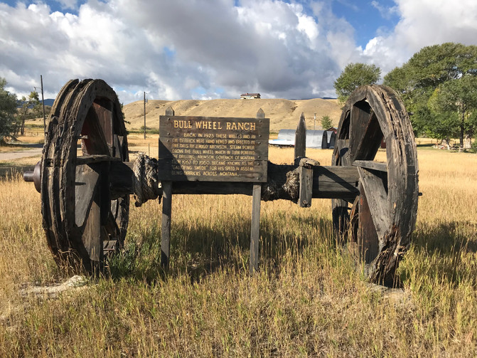 Camp Bullwheel