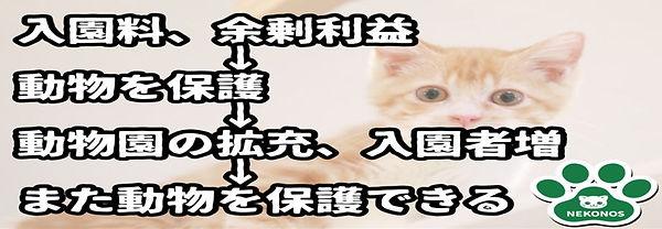 コロナ前までの保護活動.JPG