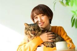 保護猫譲渡、里親