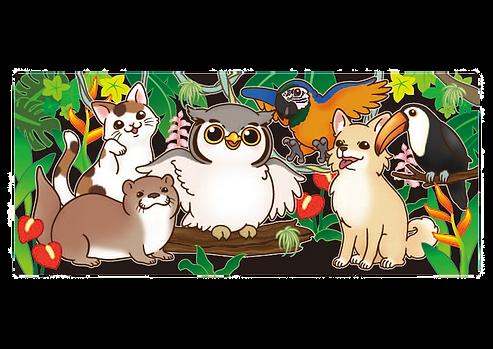 保護動物カフェねこのす 保護猫カフェ ねこのす、保護猫、猫カフェ、里親