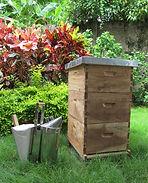 abejas y miel, apicultura, colombia, colmenas