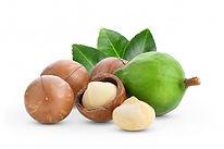 macadamia nut image.jpg