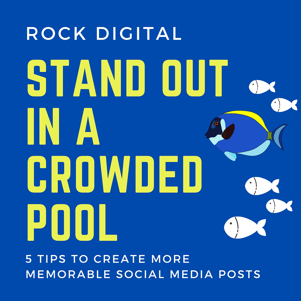 How to stand out in a crowded social media pool