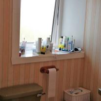 Before - Toilet & Window