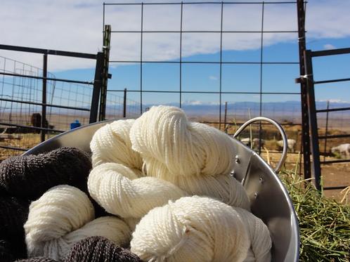 Begin - A Story-based yarn