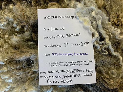 930 Beatrice - Lincoln raw fleece
