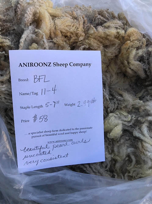 11-4 BFL raw fleece