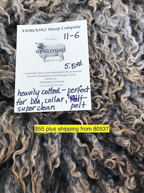 11-6 Wensleydale raw fleece