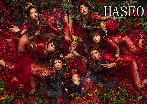 HASEO BOOK Ⅱ