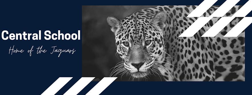 Go Jaguars! (1).png
