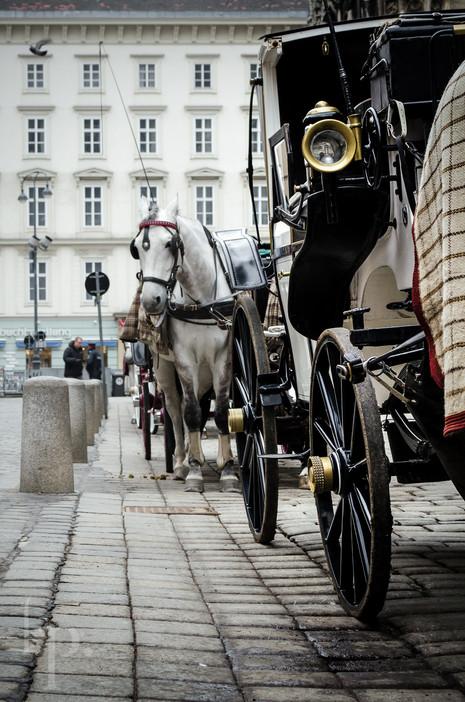 vienna | austria