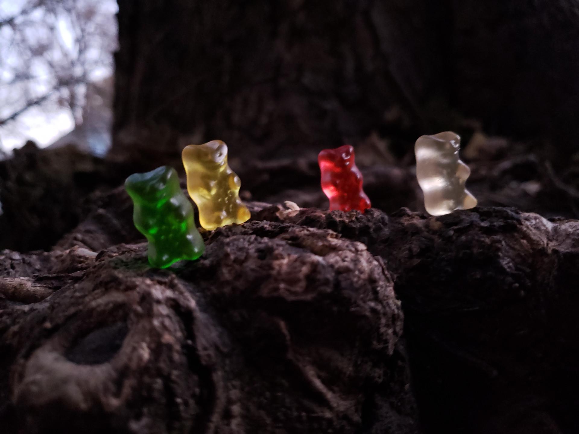 Gummy Trials