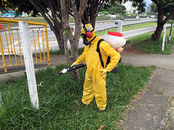 Agente de Combate à Dengue