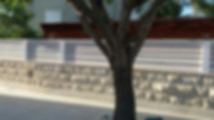מכירת עצים לבניית גדר עץ אורן ללוחות עץ ולעמודים ניתן לבחור בחתכים שונים של עץ בהתאם לצורה של הגדר שאתם רוצים עץ לגדר ניתן לקנות אצלנו צבוע בכל גוון שאתם רוצים