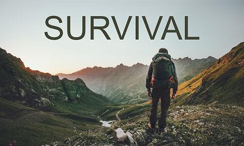 01_display_survival_01.jpg