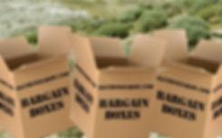 01_banner_bargain_boxes_01.jpg