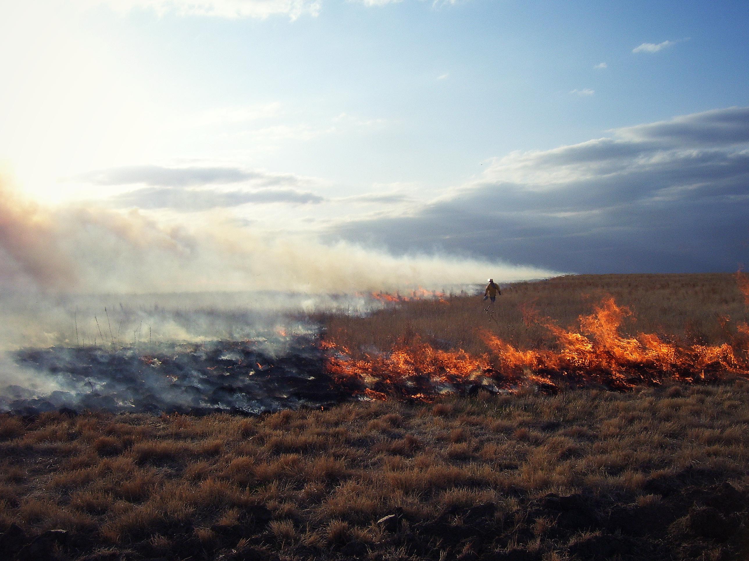 Fire pictures 044adj.jpg
