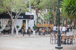 Vinaterias_LaCava_Parque_007