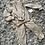 Thumbnail: Zip up ruffle lounge sets grey/camel ages 4-14 yrs