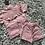 Thumbnail: Frill chest shorts set ages 2-10 Yrs