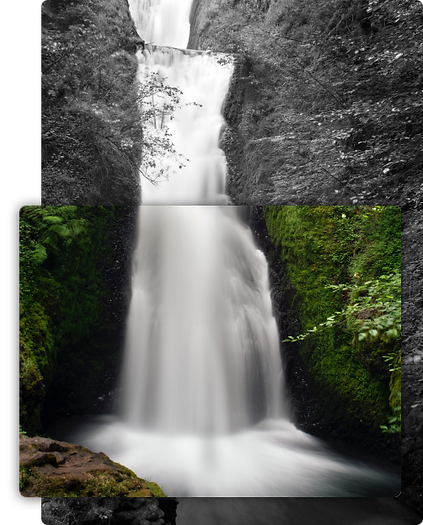 nature_image2_homepage.png