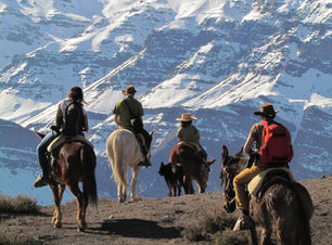 Top Santiago Horseback Riding Tours