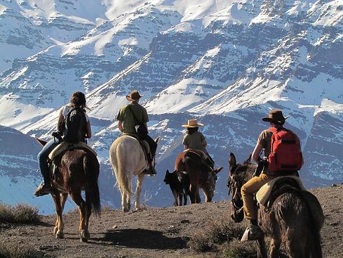 Horseback riding Mirador Cóndores