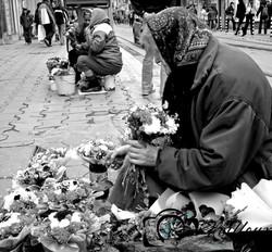 Street Flower Seller