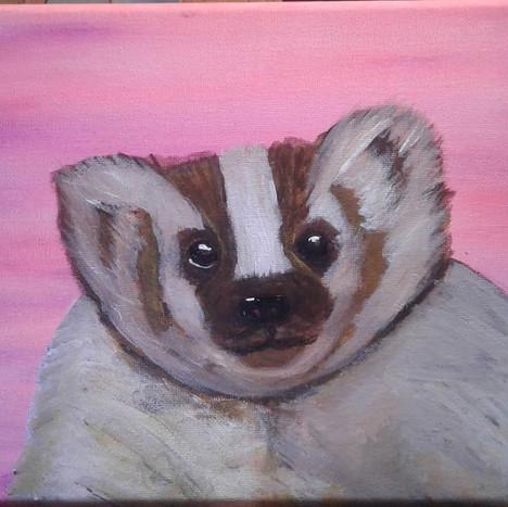 Bashful Badger