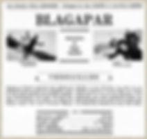 """Affiche du téléfilm """"Blagapar : Versailles""""."""